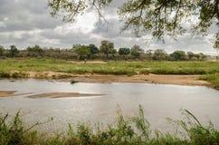 Río de Olifants, parque nacional de Kruger, Suráfrica Fotografía de archivo libre de regalías