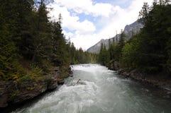Río de precipitación Imágenes de archivo libres de regalías