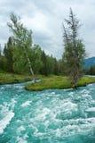Río de precipitación de la montaña Fotos de archivo libres de regalías
