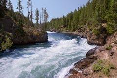 Río de precipitación en el parque nacional de Yellowstone Imágenes de archivo libres de regalías