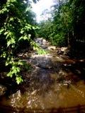Río de precipitación en Washington DC Imagen de archivo