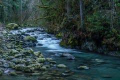 Río de Quilcene en Autumn After Rain fotografía de archivo