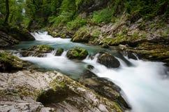 Río de Radovna en la garganta o la garganta sangrada, Eslovenia de Vintgar imágenes de archivo libres de regalías