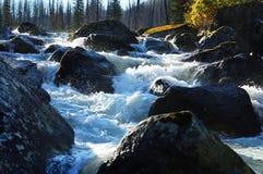 Río de Rakhmanovskoe en Kazajistán del este Foto de archivo libre de regalías
