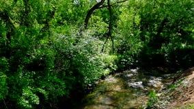 Río de Ramenka en el distrito administrativo occidental de Moscú almacen de video