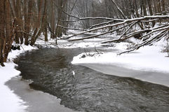 Río de Rokytna en el invierno, República Checa, Europa Fotos de archivo