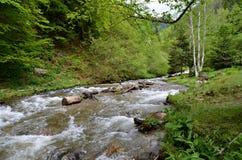 Río de Sadu Fotografía de archivo libre de regalías