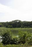 Río de Serangoon Imagen de archivo libre de regalías