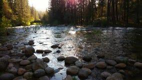 Río de South Fork Merced Fotografía de archivo
