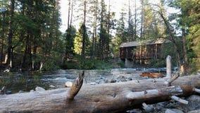 Río de South Fork Merced Fotos de archivo libres de regalías