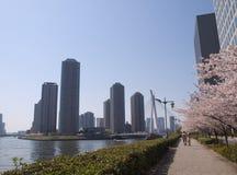 Río de Sumida Imagen de archivo libre de regalías