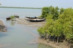 Río de Sundarban Imagen de archivo libre de regalías