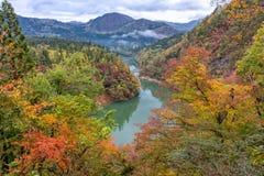 Río de Tadami y puente púrpura Imagen de archivo libre de regalías