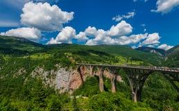 Río de Tara, Montenegro fotografía de archivo