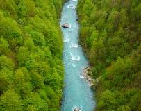 Río de Tara, Montenegro Fotografía de archivo libre de regalías