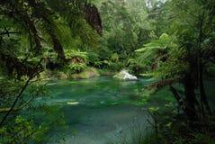 Río de Tarawera. Nueva Zelanda imágenes de archivo libres de regalías
