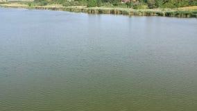 Río de Tisa en Serbia almacen de video