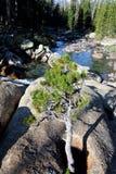Río de Tuolomne del parque nacional de Yosemite Foto de archivo libre de regalías