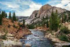 Río de Tuolumne en Glen Aulin en el parque nacional de Yosemite Imágenes de archivo libres de regalías