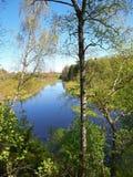 Río del bosque en la parte central de Rusia Imagen de archivo