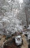 Río de Virginia Occidental con nieve e hielo Fotos de archivo libres de regalías