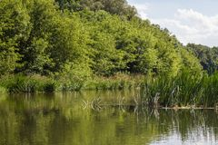 Río de Vorona Fotos de archivo