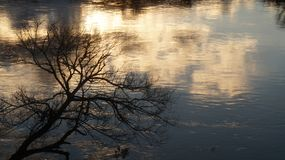 Río de Waikato en una mediados de puesta del sol del invierno foto de archivo