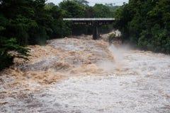 Río de Wailuku en Hilo Imagen de archivo libre de regalías