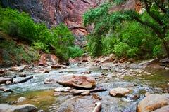 Río de Zion Imagen de archivo
