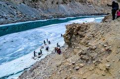 Río debajo del río congelado Foto de archivo libre de regalías