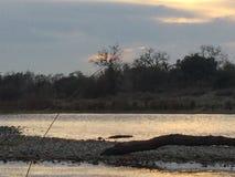 Río del americano de la puesta del sol Fotografía de archivo