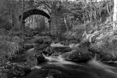 Río del arbolado que corre abajo al pantano de Agden Fotografía de archivo libre de regalías