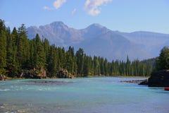 Río del arqueamiento, Alberta Fotografía de archivo