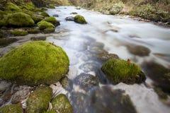 Río del bistrica de Kamniška de las montañas Imagenes de archivo