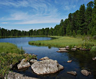 Río del bosque Imagenes de archivo