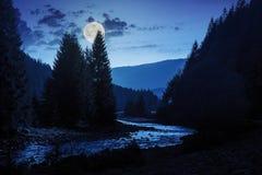 Río del bosque con las piedras y musgo en la noche imagenes de archivo