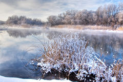 Río del bosque del invierno Fotos de archivo libres de regalías