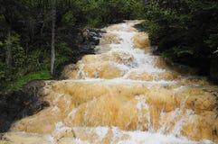 Río del bosque del rango de montaña Imágenes de archivo libres de regalías