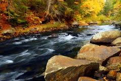 Río del bosque en la caída Foto de archivo libre de regalías