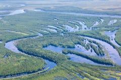Río del bosque en la inundación, visión superior Imágenes de archivo libres de regalías