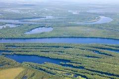 Río del bosque en la inundación, visión superior Imagen de archivo libre de regalías