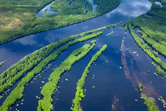 Río del bosque en la primavera, visión superior Foto de archivo