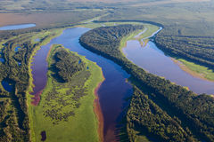 Río del bosque, visión superior Imagen de archivo libre de regalías