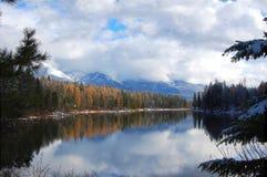 Río del cisne en Bigfork, Montana Foto de archivo