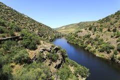 """Río del Coa del tributario del †del valle del Duero """" Foto de archivo"""