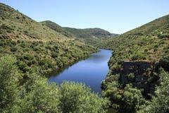 """Río del Coa del tributario del †del valle del Duero """" Fotografía de archivo libre de regalías"""