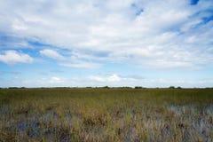 Río del ` de los marismas de la Florida del ` de la hierba Imagenes de archivo