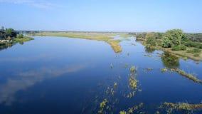 Río del delta de Okavango en la frontera de Namibia y de Angola almacen de video