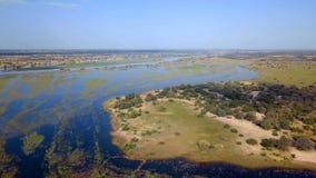 Río del delta de Okavango en la frontera de Namibia y de Angola almacen de metraje de vídeo
