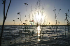 Río del desbordamiento Imagenes de archivo